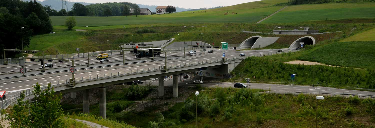 A highway on a bridge leading into a tunnel. With a link to the home page.